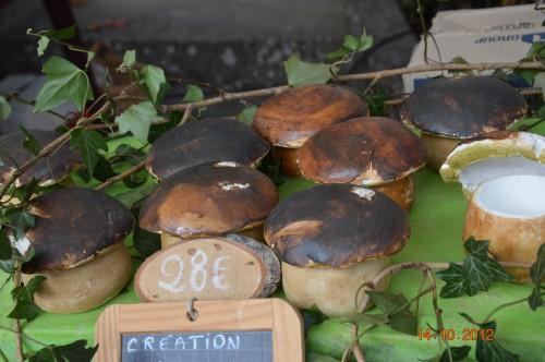 champignons,citrouilles,st Mayme de Péreyrol,fuschias,jardin aut 083.JPG