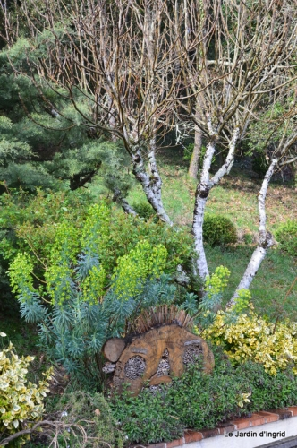 tonte,jardin,fleurettes 029.JPG