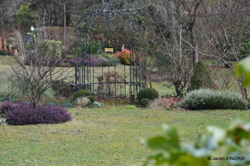 premières fleurs février,la pluie,la fauvette,hélébores 002.JPG