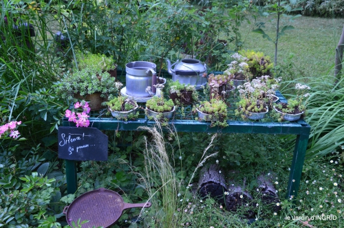 brocante Beaumont,jardin,flambé,hemerocalle,potager 141.JPG