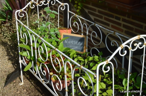 portes ouvertes,taille marguerittes,jardin 002.JPG