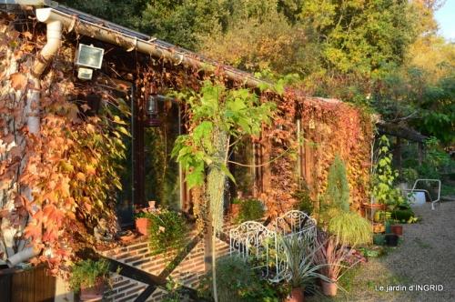 canal,automne,tonte des feuilles 053.JPG