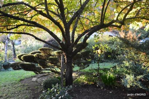 Jardin à l'automne 135.jpg