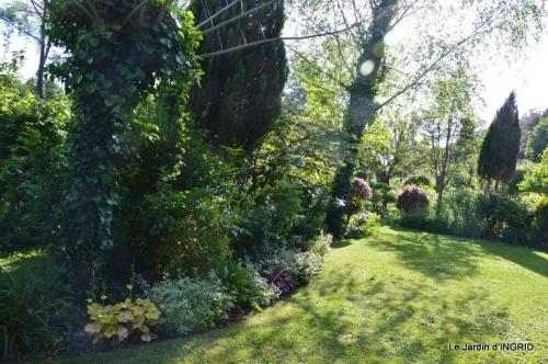 jardin soir et matin 034.JPG