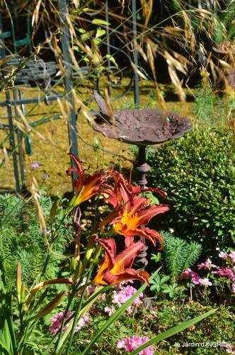 jardin,papillons,Cadouin,légumes,Sophie, 118.JPG