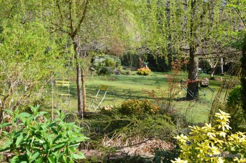araignée,vues jardin,cygnes,insecte 054.JPG