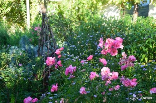 fleurs petit jardin,bouquets,grand jardin 029.JPG
