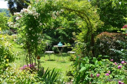 jardin en mai,visites bus,petit jardin 153.JPG