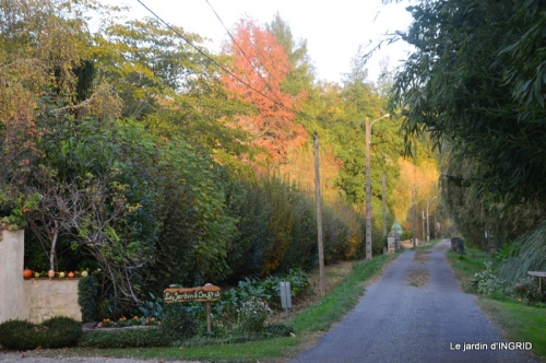 canal automne ,jardin,Ines 056.JPG