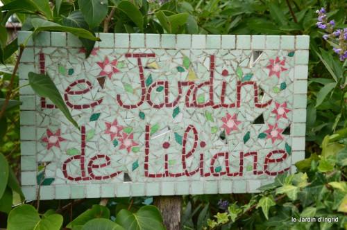 asters,bouquets,jardin de Lilianne 107.JPG