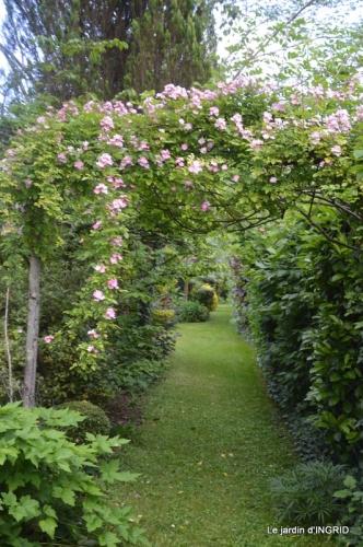 les roses au jardin 072.JPG