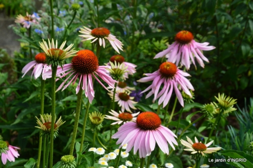 juin jardin,bouquet,sophie 025.JPG