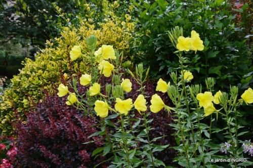 jardin juin,cabane,bouquet 106.JPG