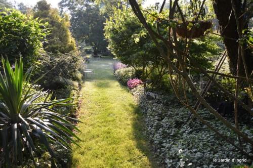 jardin matin,Romane ,nicky 017.JPG