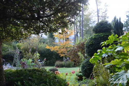 Jardin à l'automne 024.JPG