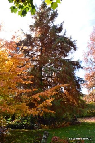 les arbres en automne,cabane 081.JPG
