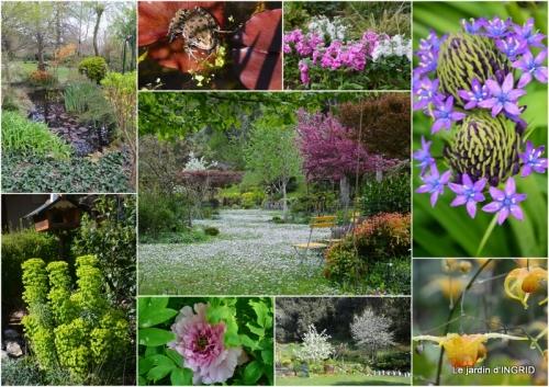 2018-04-27 jardin en avril.jpg