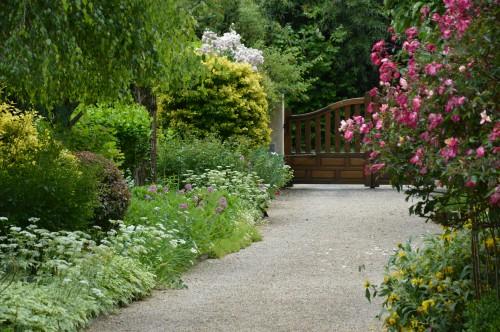 tour du jardin en juin 052.JPG