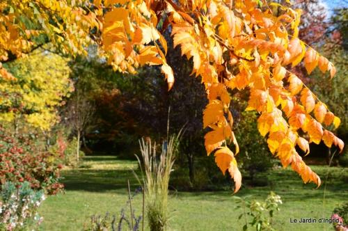 anniversaire Mamy,chateau d'eau,jardin automne 071.JPG