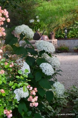 hémérocalles,les filles,les cygnes,la passerelle,moi,jardin 133.JPG