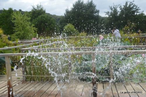 orage,puces,bouquet,Anniv.Ines,Brantome,Jardins d'eau 283.JPG