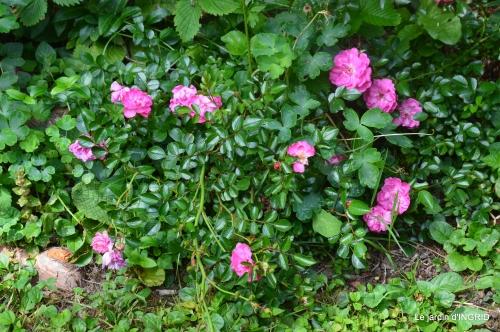 tour jardin de mai ,les épouvantails,préparation 125.JPG