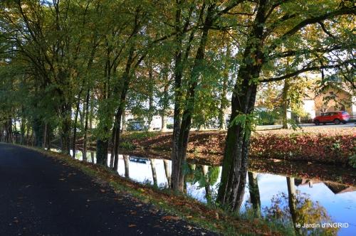 jardin automne,voisinage,canal 063.JPG