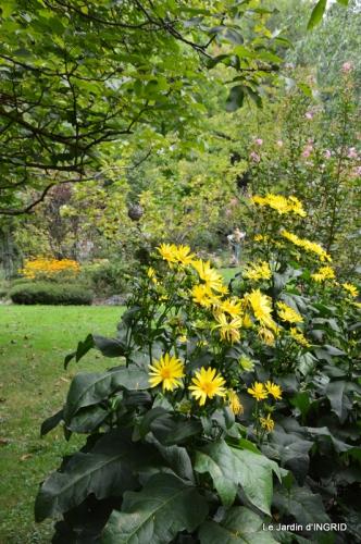jardin ,bouquet 059.JPG