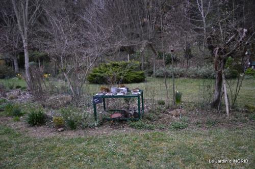 jardin (3 semaine de mars) 051.JPG