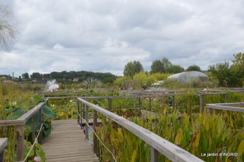 orage,puces,bouquet,Anniv.Ines,Brantome,Jardins d'eau 274.JPG