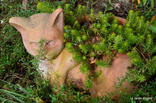 jardin serre bucher automne 037.JPG