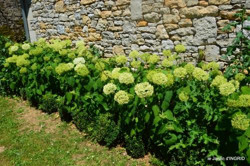 le jardin de Frescati,roses 065.jpg