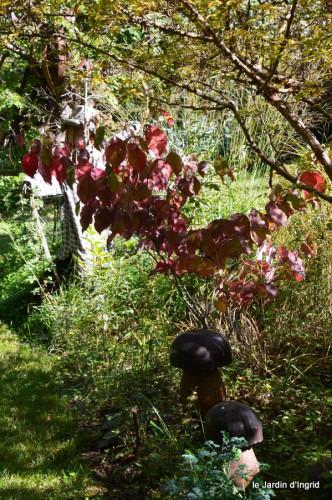 jardin octobre,chez Marylaur,Arnaud ,Ariane,la mer,sauges 180.JPG