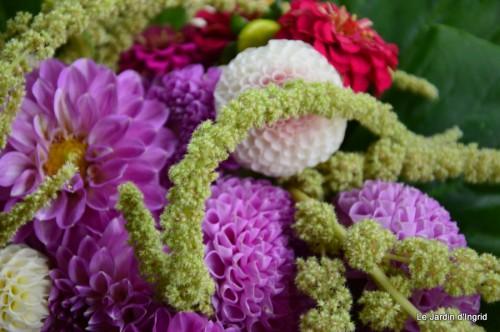 tournesols,pt jardin,nénuphard,libellules,lavande bouquet,carava 121.JPG