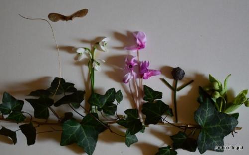 matin d'hiver,tableaux de fleurs janvier 049.JPG