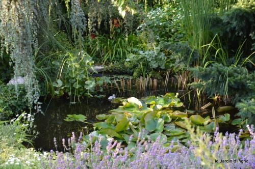 jardin matin,Romane ,nicky 001.JPG