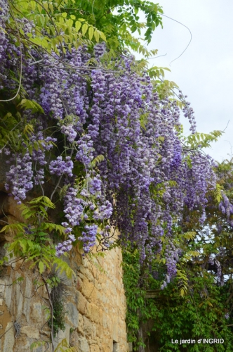 la Roque Gageac,Ines,jardin 055.JPG