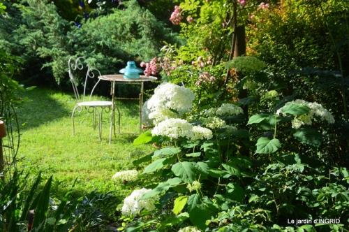 hémérocalles,Doprdogne,canal,bouquet fruit,jardin 063.JPG