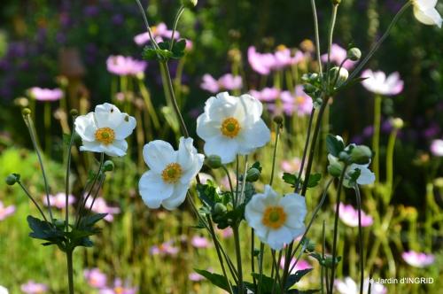 Fleurettes,Dordogne,jardin 150.JPG