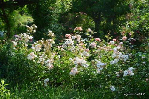 Trémolat,petit jardin,Julie 096.JPG