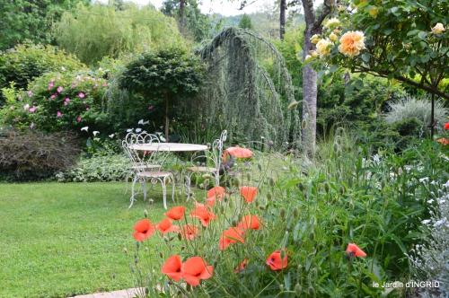 trémolat,oiseaux,jardin,cygnes,roses, 020.JPG