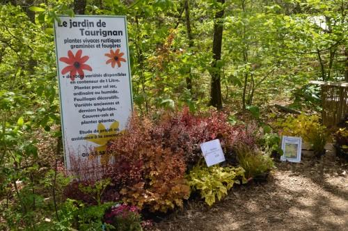 ancolies,jardins de la Brande,les filles et Caro 010.JPG