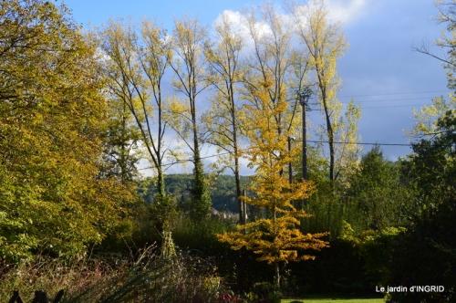 chez Caro,jardin automne 072.JPG