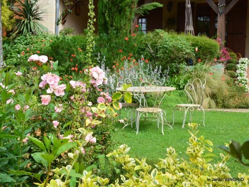 jardin pluie,Inès,Bébés cygnes,bouquet,canal 057.JPG
