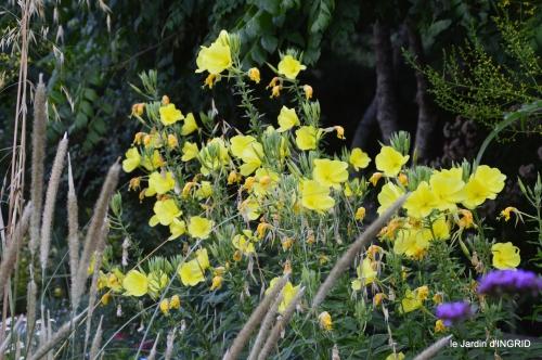 jardin,papillons,Cadouin,légumes,Sophie, 043.JPG
