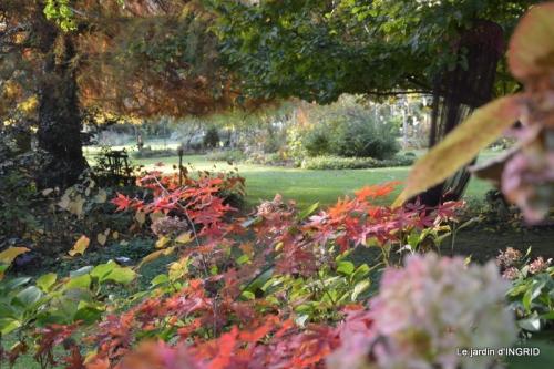 automne 019.JPG