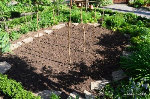 jardin avril 035.JPG