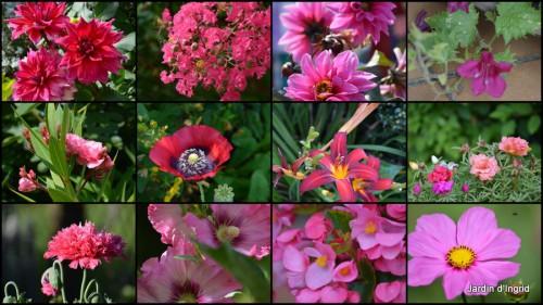 2013-07-02 coeur des fleurs,papillons,libellules2.jpg