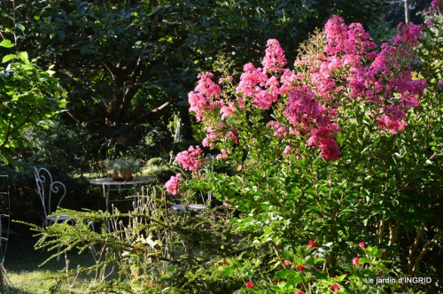 dahlias,jardin,puces st Avit Seigneur,Paniers Issigeac,Romane 037.JPG
