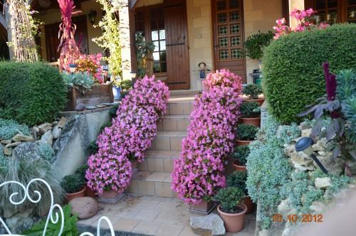 citrouilles,jardin,Combarel 022.JPG